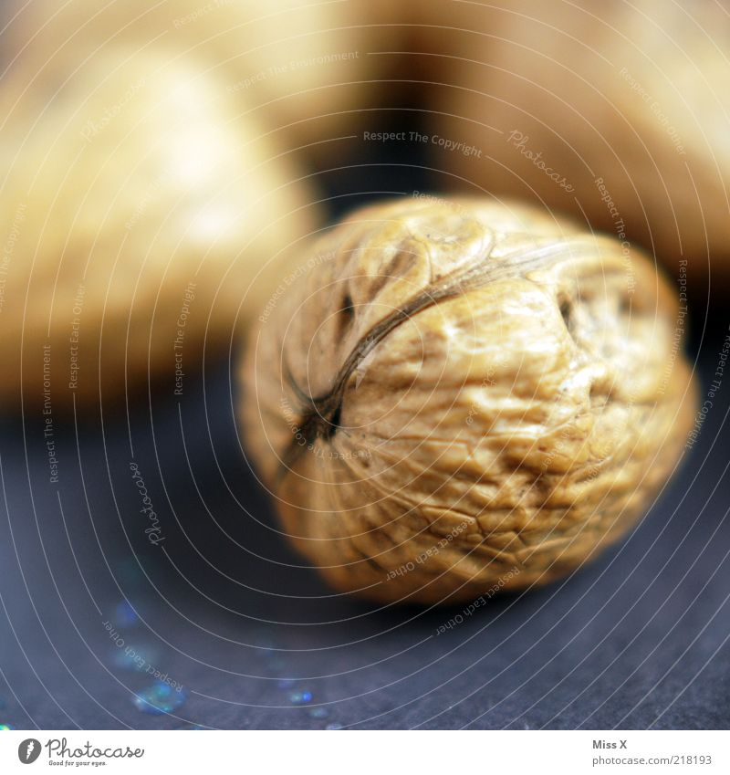 nuts Decoration Delicious Round Nut Walnut Nutshell Christmas decoration Fat Colour photo Close-up Structures and shapes Deserted Shallow depth of field Brown