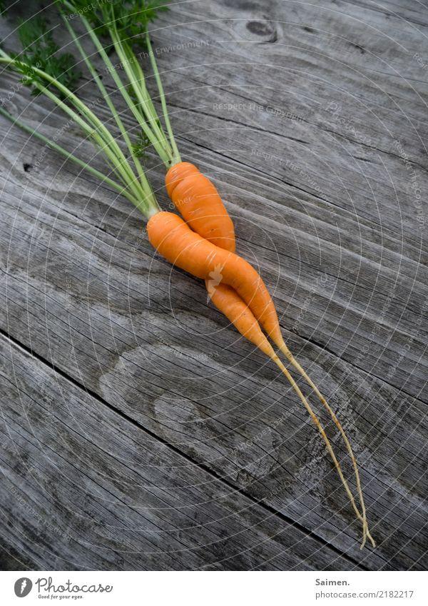 Zwei Möhren Liebe Garten gärtnern Gemüse Holz Linien und Formen Grün Gewächs gesunde ernährung Essen Nahrung zusammen zwei zweisamkeit bunt Paar Vitamine