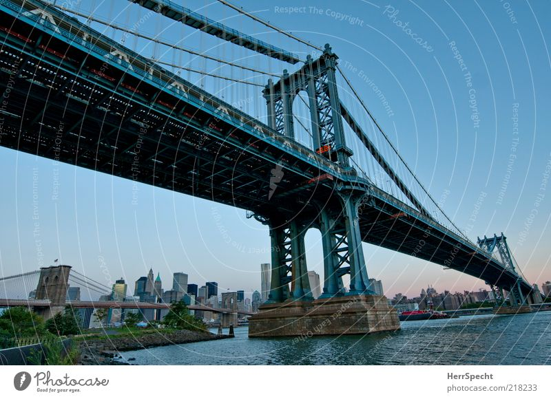Water City Blue High-rise Bridge Skyline Steel cable Landmark Beautiful weather New York City Blue sky Manhattan Tourist Attraction Brooklyn USA Port City