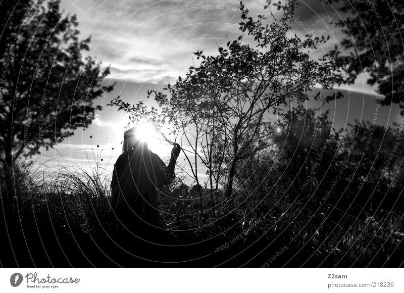Woman Sky Tree Sun Leaf Loneliness Calm Adults Environment Meadow Dark Landscape Grass Sadness Dream Elegant
