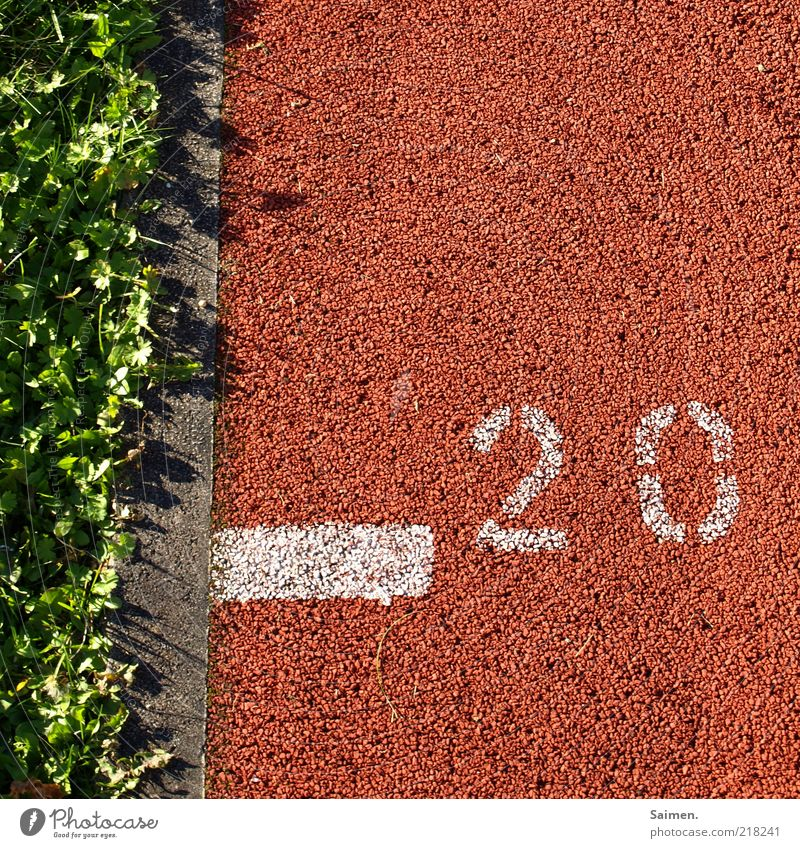 moving subsoil Meadow Sports Tartan Digits and numbers Line Running track Grass Clover Complementary colour Structures and shapes Rubber Shadow Marker line Red