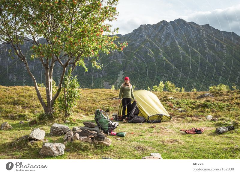 Nature Vacation & Travel Youth (Young adults) Young woman Green Landscape Tree Relaxation Far-off places Mountain Life Freedom Trip Contentment
