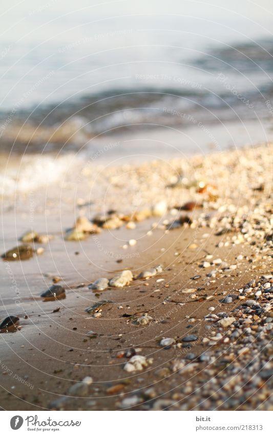 beach Freedom Nature Landscape Elements Earth Sand Water Sunrise Sunset Sunlight Summer Beautiful weather Waves Coast Lakeside Beach Bay Ocean Brown Lake Garda