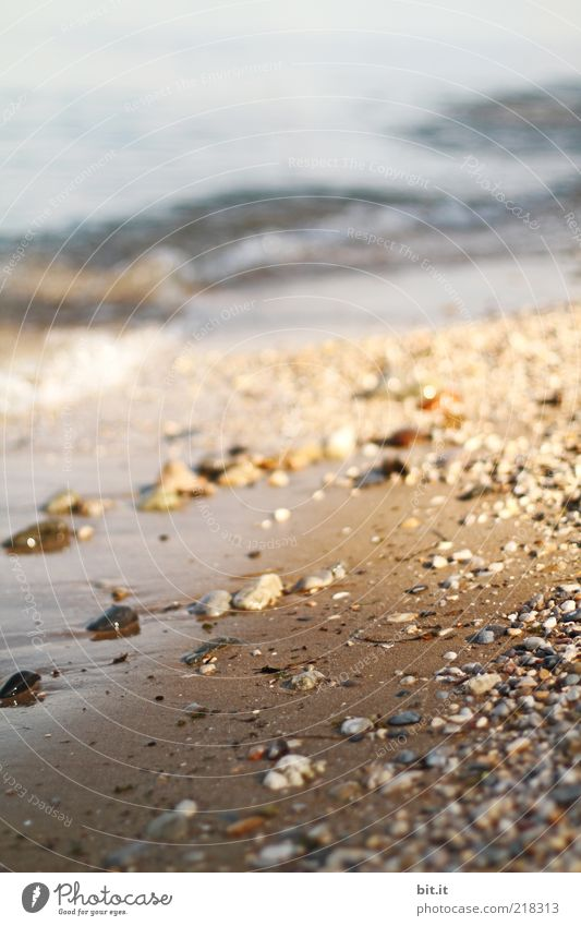 Nature Water Summer Ocean Beach Landscape Freedom Coast Sand Stone Lake Moody Brown Earth Waves Elements