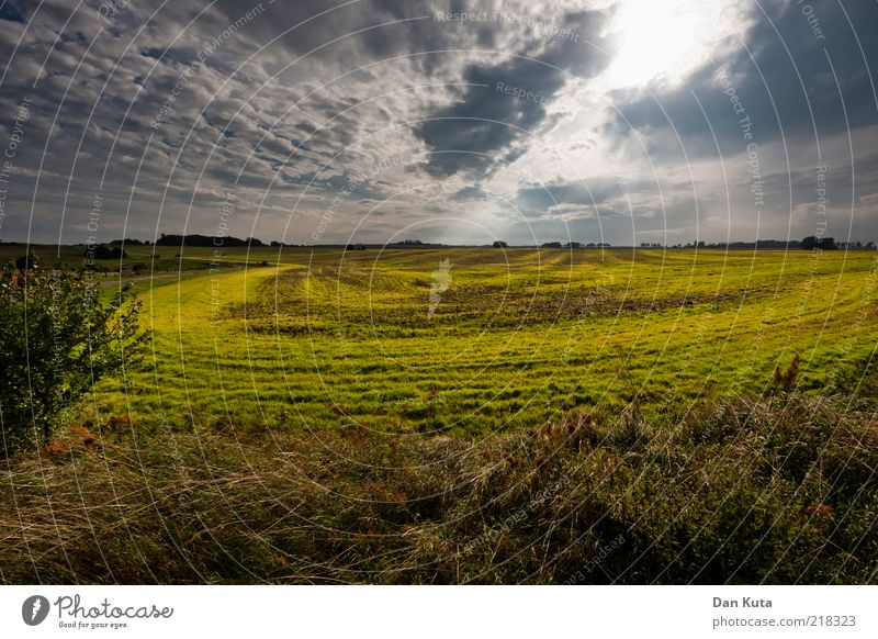 Beautiful Sky Summer Clouds Far-off places Relaxation Meadow Autumn Grass Landscape Moody Field Weather Horizon Circle Island