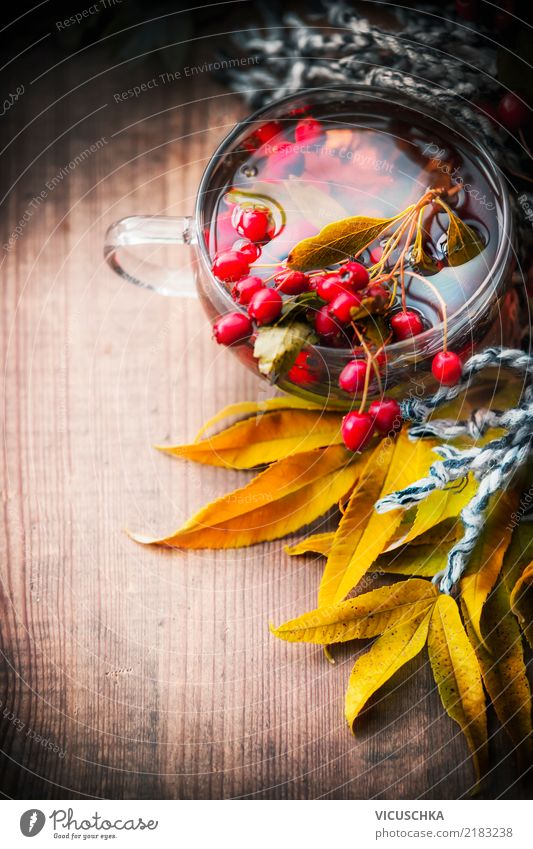 Healthy Eating Life Yellow Lifestyle Autumn Background picture Style Design Living or residing Retro Beverage Common cold Tea Berries Autumn leaves
