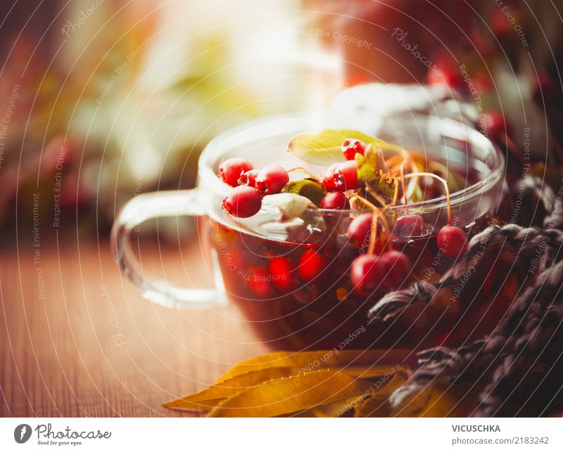 Autumn cup of tea with red berries of hawthorn Beverage Hot drink Tea Lifestyle Style Design Healthy Alternative medicine Relaxation Living or residing Garden