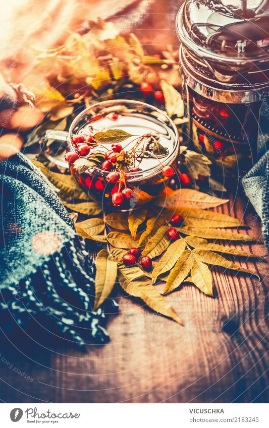 Nature Healthy Eating Life Yellow Lifestyle Autumn Style Health care Garden Moody Design Living or residing Table Common cold Tea