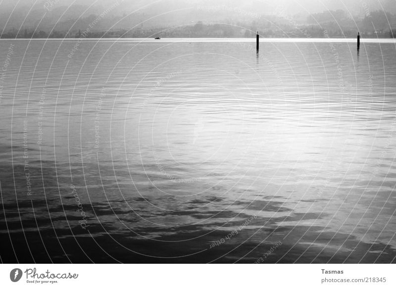 Water Calm Lake Lakeside Flow Reflection Liquid Surface of water Mooring post