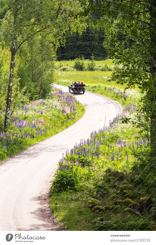Human being Nature Old Summer Landscape Relaxation Life Lifestyle Senior citizen Style Exceptional Trip Leisure and hobbies Transport Car Retro