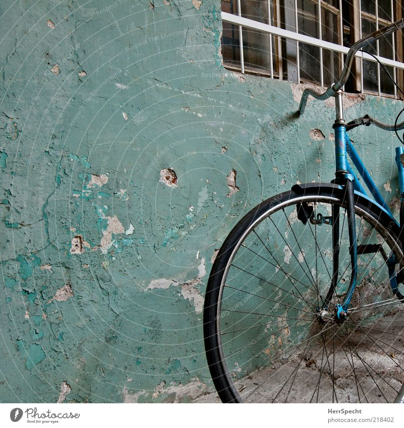 Beautiful old Wall (barrier) Wall (building) Window Bicycle Old Exceptional Dirty Dark Trashy Gloomy Blue Black Decline Transience Plaster Colour Flake off