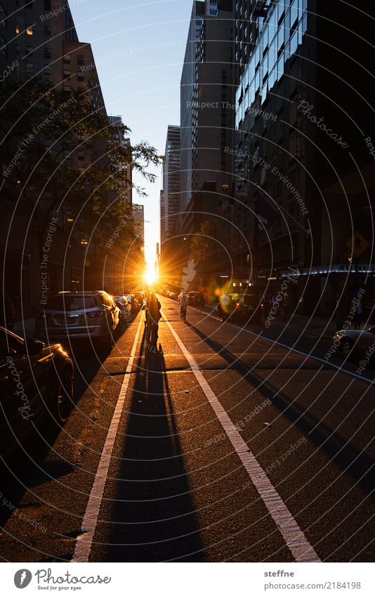 Evening Sunrise Sunset Sunlight Town High-rise Joie de vivre (Vitality) Hope Manhattan New York City Colour photo Copy Space top Copy Space bottom Twilight