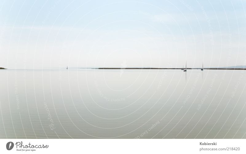 Lake Neusiedl Sailing Freedom Aquatics Water Beautiful weather Navigation Boating trip Observe Discover To enjoy Dream Exceptional Far-off places Infinity Blue