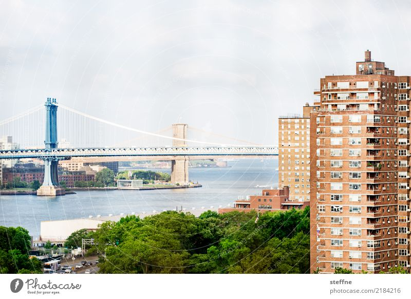 Living in the city V Town House (Residential Structure) Vantage point New York City Manhattan Manhattan Bridge Brooklyn Bridge Living or residing Rent