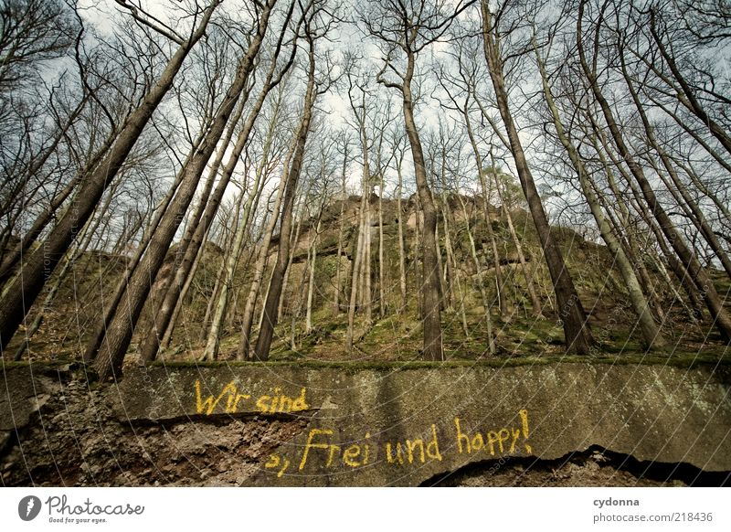We are free and happy! Lifestyle Joy Contentment Calm Environment Nature Landscape Autumn Tree Forest Wall (barrier) Wall (building) Characters Graffiti