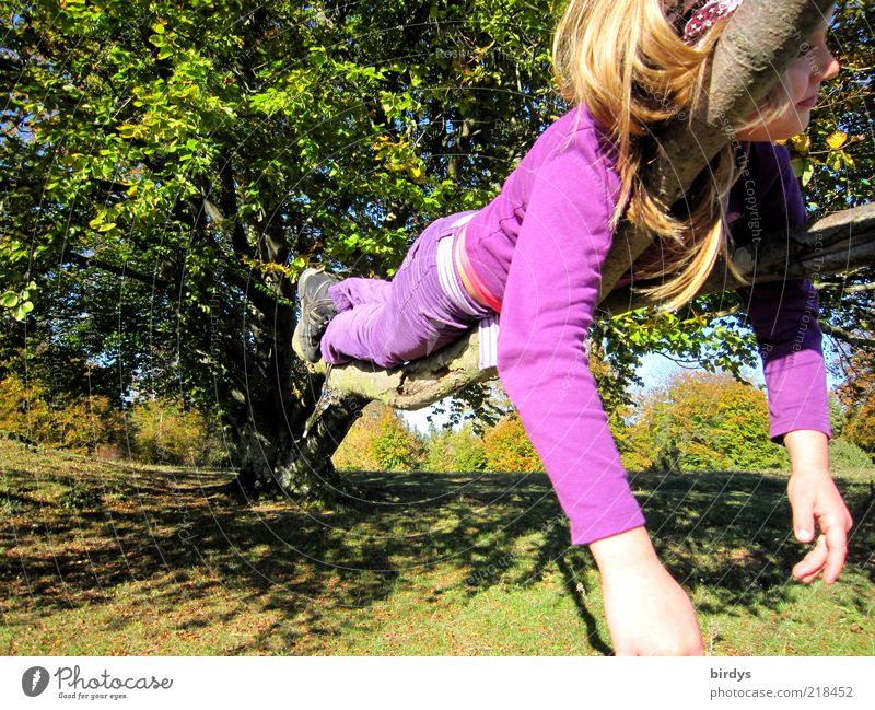 Life is beautiful Happy Playing Girl 1 Human being 3 - 8 years Child Infancy Nature Beautiful weather Tree Park Meadow To enjoy Lie Dream Exceptional Funny