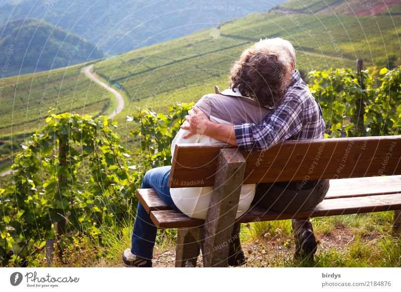 Two seniors are sitting on a bench in a vineyard and kissing Life Well-being Trip Hiking Female senior Woman Male senior Man Couple Partner Senior citizen 2