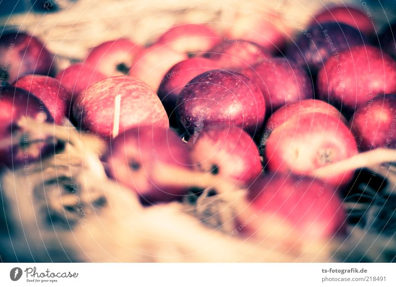 Apple Bird Nest Food Fruit Nutrition Organic produce Slow food Fragrance Thanksgiving Autumn Straw Harvest Delicious Round Juicy Brown Gray Red Colour Nature