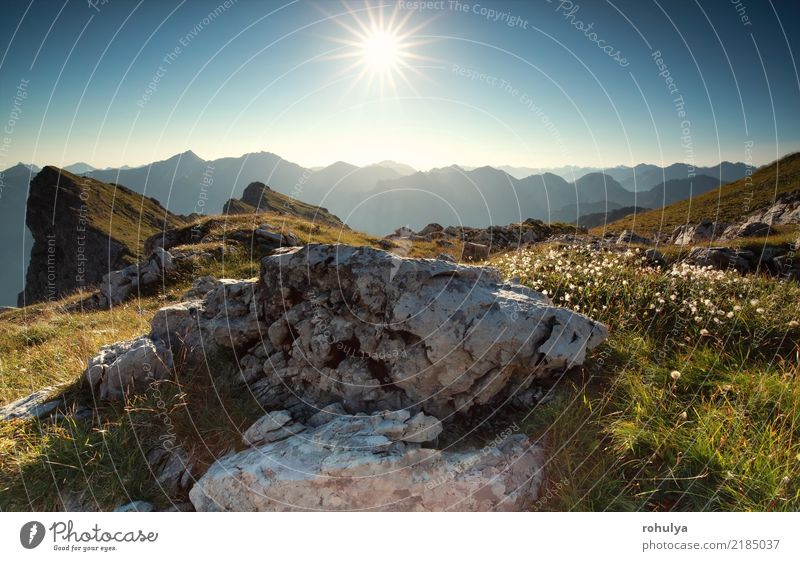 morning sunshine over rocks and alpine flowers Sky Nature Vacation & Travel Plant Blue Summer Sun Landscape Flower Mountain Meadow Stone Germany Rock Hiking