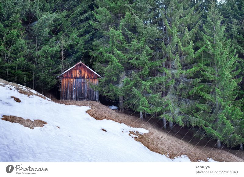 wooden hut in the winter evergreen forest Nature Vacation & Travel Green Landscape House (Residential Structure) Winter Forest Mountain Snow Wood Building