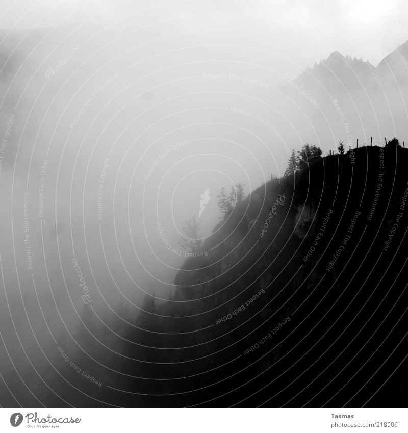 Sennentuntschi Landscape Elements Air Weather Tree Rock Alps Peak Nature Black & white photo Exterior shot Deserted Shadow Silhouette Mountain forest Haze