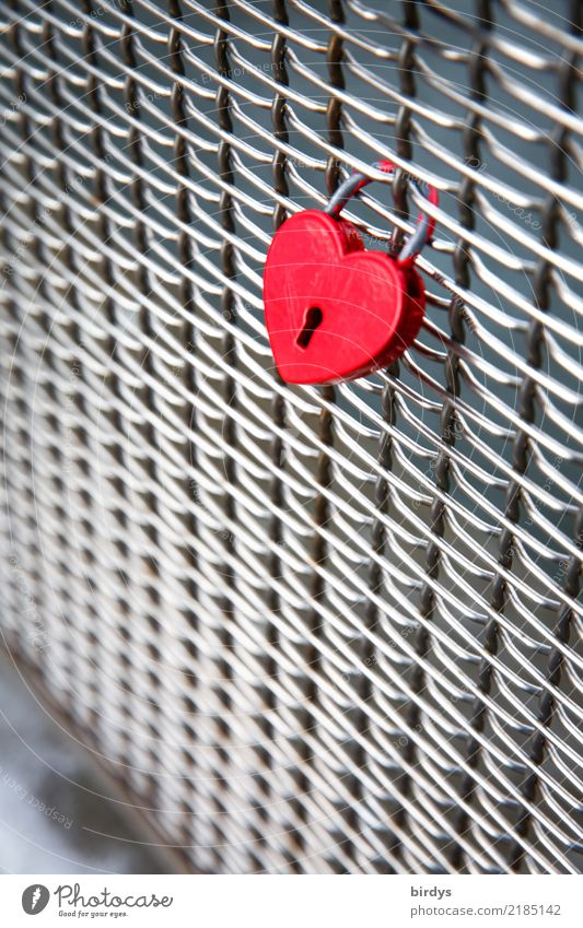 red as love Style Bridge railing Sign Heart Love padlock Esthetic Positive Red Silver Emotions Friendship Together Infatuation Relationship Passion Attachment