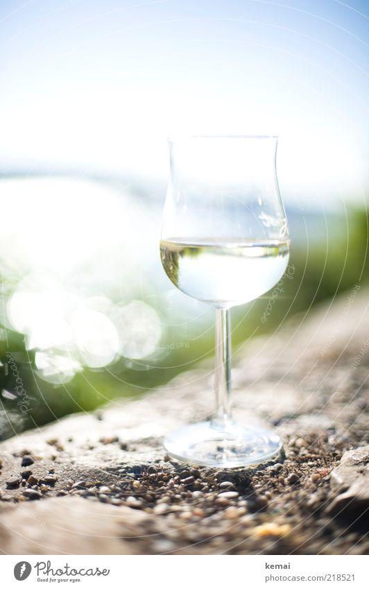 A glass of Riesling Food Rheingau Beverage Drinking Alcoholic drinks Wine White wine Whitewine glass Sunlight Summer Beautiful weather Stone Elegant Bright