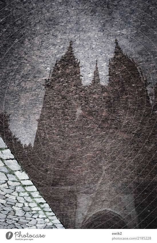 Meissen from below Water Germany Small Town Church Dome Threat Dark Large Tall Wet Paving stone Church spire On the head Inverted Colour photo Subdued colour