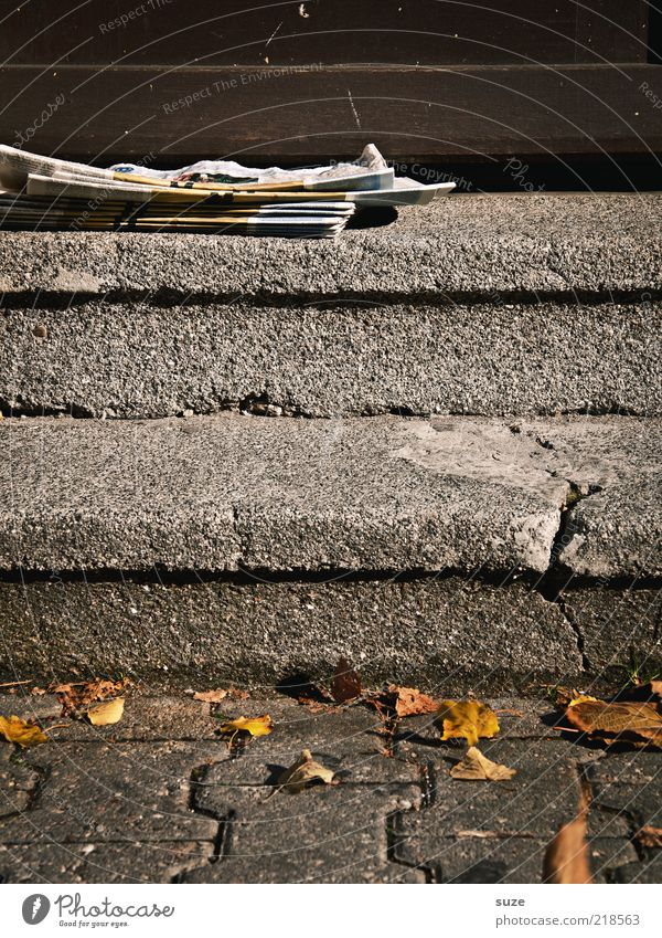 Old Loneliness Environment Autumn Lanes & trails Lie Door Stairs Gloomy Newspaper Advertising Entrance Crack & Rip & Tear Autumn leaves Mail Magazine