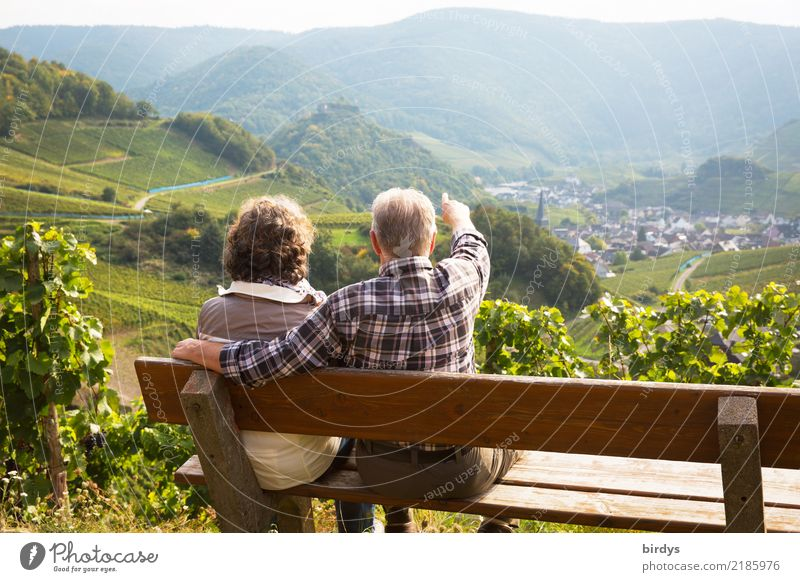 2 seniors in love are sitting on a bench in the vineyard and look into the Ahr valley. The man points to something. Life Trip Summer Mountain Hiking Masculine