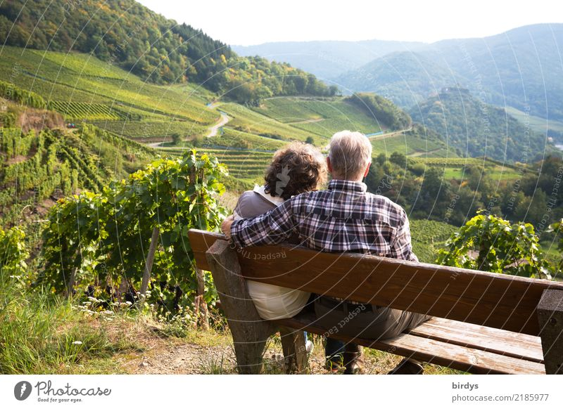 a couple of senior citizens are sitting comfortably on a bench in the vineyard, looking out into the Ahr valley. He has lovingly put his arm around her Life