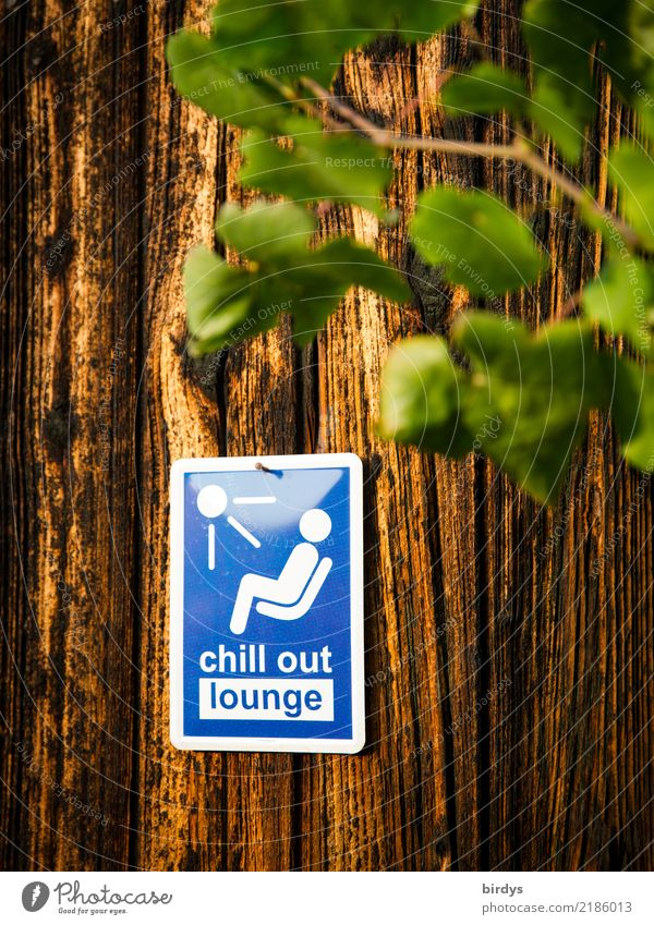 chill area Healthy Relaxation Calm Party Lounge Plant Wooden wall Sign Characters Signs and labeling Signage Warning sign To enjoy Friendliness Positive Blue