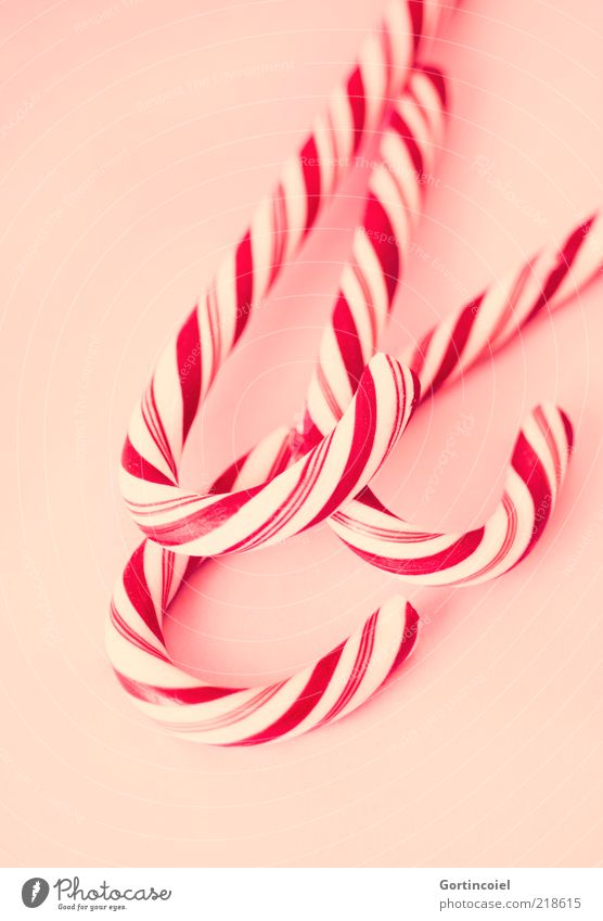 Sugar Red-White Food Candy Nutrition Delicious Sweet Candy cane Striped Unhealthy Colour photo Interior shot Studio shot Pattern Shallow depth of field Curved 3