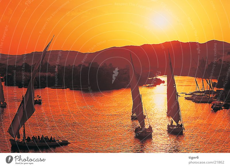 Ships in the sunset Egypt Nile Watercraft Sunset Romance Moral