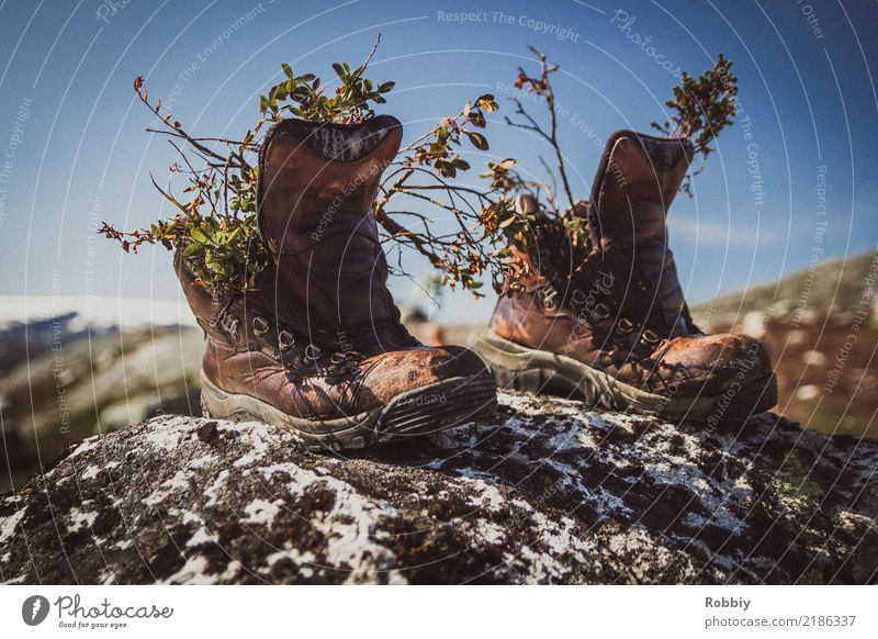 Nature Vacation & Travel Old Mountain Environment Senior citizen Lanes & trails Movement Hiking Dirty Footwear Creativity Beginning Adventure Climate Transience