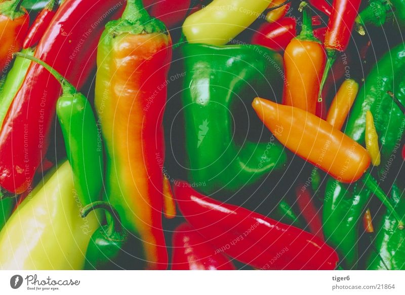 Nutrition Healthy Vegetable Pepper Arranged