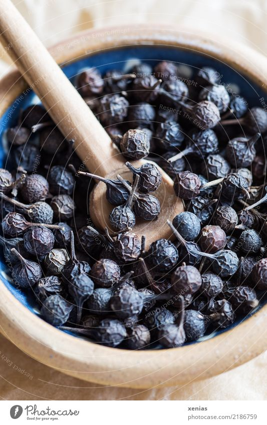 cubeb pepper Herbs and spices Pepper Peppercorn Medicinal plant Piper cubeba pepper family Organic produce Bowl Spoon Blue Brown Dried Grain Pepper with stick