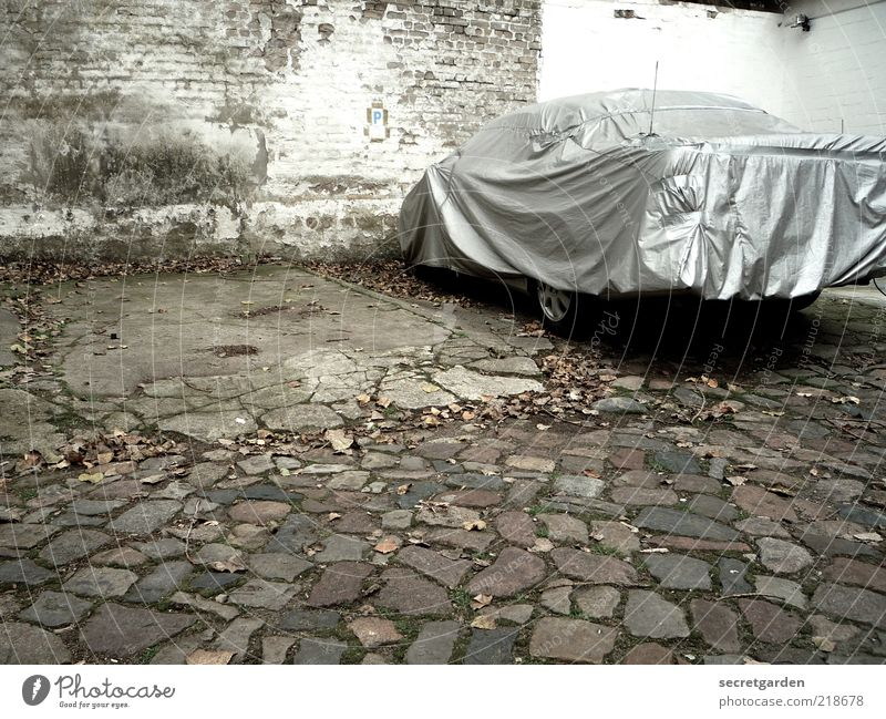 White Wall (building) Gray Wall (barrier) Building Car Free Stand Safety Gloomy Protection Cobblestones Vehicle Parking lot Autumn leaves Shield