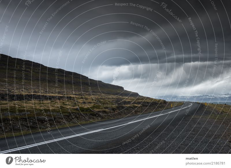 Rain after the curve Nature Landscape Water Sky Storm clouds Horizon Spring Bad weather Gale Grass Moss Mountain Fjord Street Dark Brown Yellow Gray Iceland