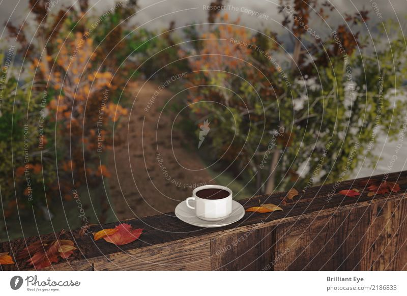 autumn To have a coffee Beverage Hot drink Lifestyle Vacation & Travel Autumn Nature Landscape Wind Tree Forest Relaxation Simple Kitsch Natural Yellow Red