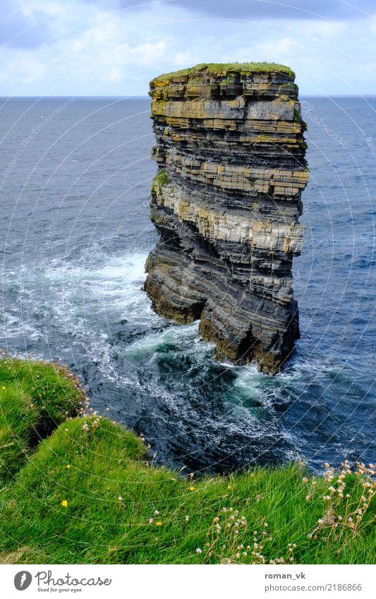St. Patrick's Head Nature Landscape Animal Elements Water Horizon Summer Grass Rock Waves Coast Ocean Attentive Respect Pride Monolith Wind Northern Ireland