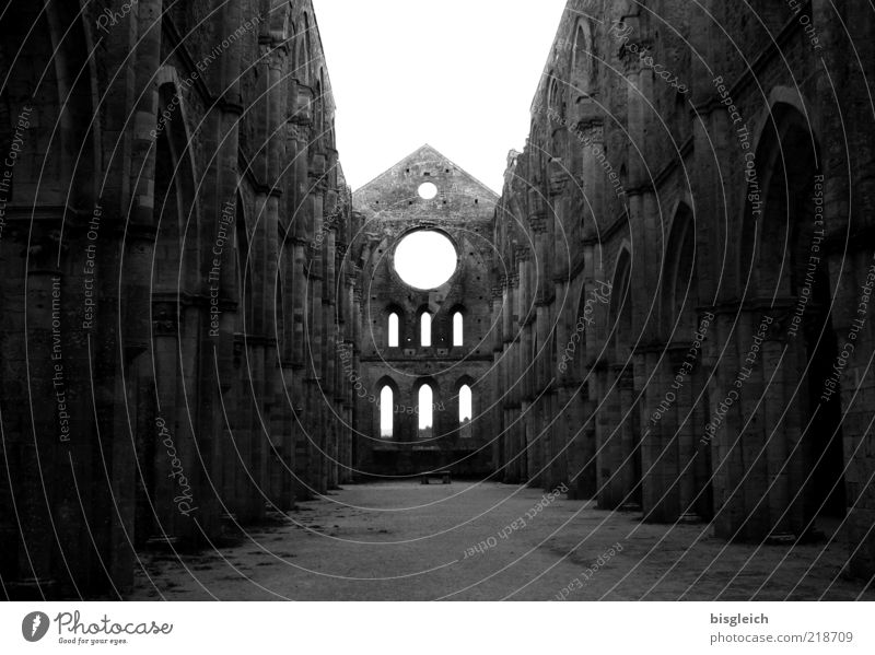 San Galgano (Italy) II Europe Church Ruin Window Wall (barrier) Tourist Attraction Stone Respect Loneliness Belief Religion and faith Calm Moody Tuscany
