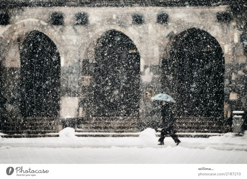 Wild snowfall in front of the town hall Human being Winter Snow Snowfall Chemnitz City hall Building Stairs Archway Umbrella Cold flake vertebrae Man