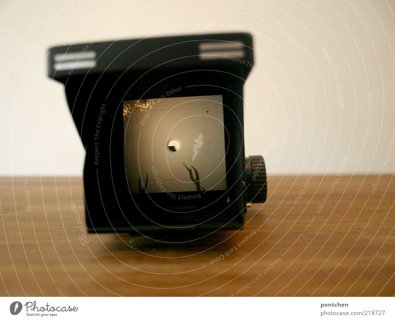 Old White Black Wall (building) Wood Brown Table Lie Camera Nostalgia Antlers Viewfinder Medium format