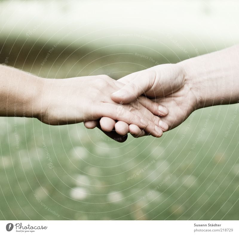Together Feminine Family & Relations Couple Partner Skin Arm Hand 2 Human being Firm Power Compassion Dedication Humanity Solidarity Responsibility Friendliness