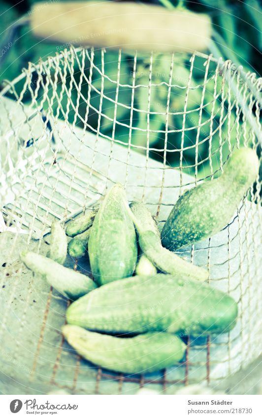 Green Food Fresh Vegetable Harvest Door handle Organic produce Basket Biological Vegetarian diet Cucumber Healthy Eating Shopping basket Vegan diet Gherkin