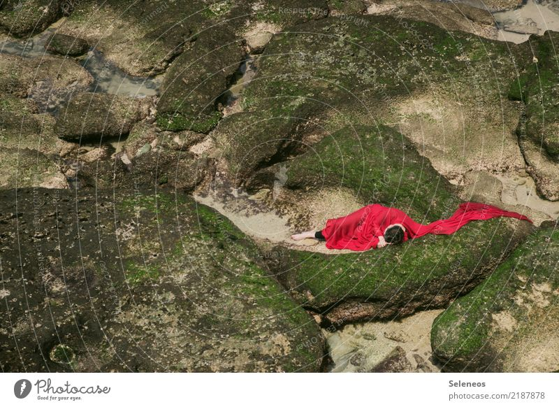 Woman Human being Nature Landscape Ocean Calm Beach Adults Environment Coast Feminine Rock Sleep