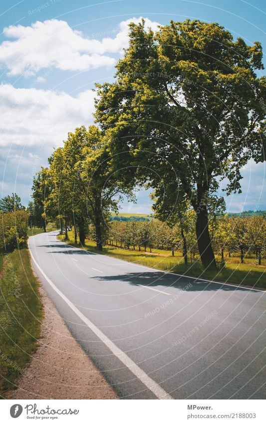 At the roadside Environment Clouds Tree Transport Traffic infrastructure Street Lanes & trails Logistics Roadside Country road Fruit trees Itinerary