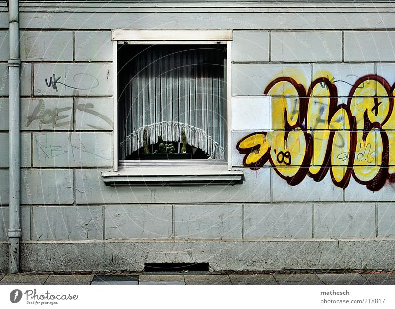 City House (Residential Structure) Yellow Window Graffiti Wall (building) Gray Wall (barrier) Stone Building Art Glass Facade Gloomy Sidewalk Pipe
