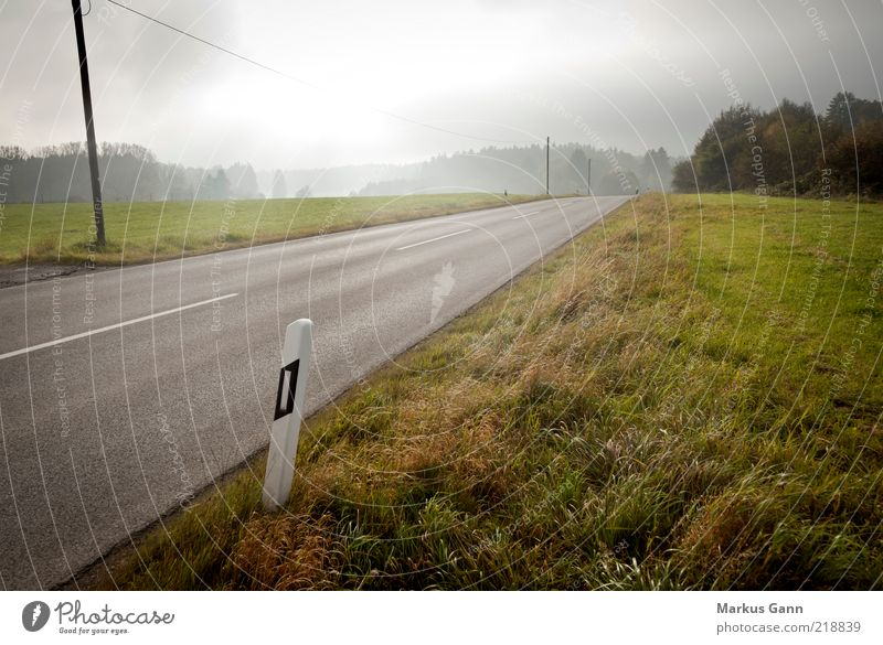 Country road in autumn Nature Landscape Autumn Climate Weather Bad weather Fog Grass Meadow Traffic infrastructure Street Brown Gray Asphalt Cable Pole